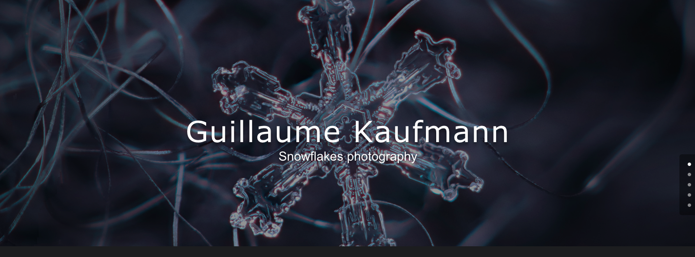 Guillaume Kaufmann